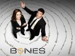 bones_wall04_1600x1200
